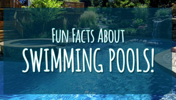 Fun Facts About Swimming Pools